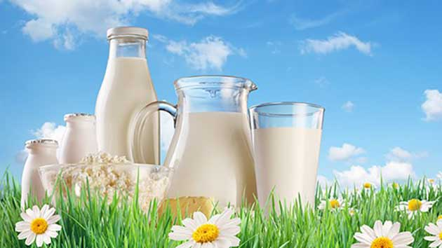 Công dụng của sữa non