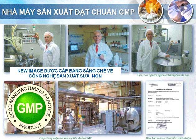 Sữa non alpha lipid đạt tiêu chuẩn GMP