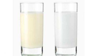 Sữa non alpha lipid và sữa thường