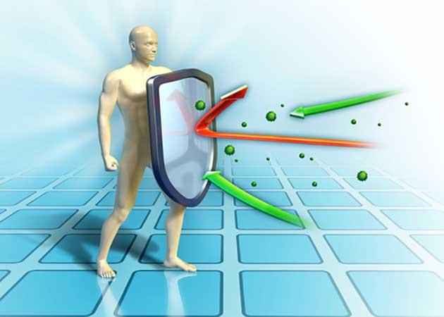 Vai trò của kháng thể